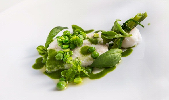 Whitefish with basil, green beans, peas, poached quail eggs and lemon